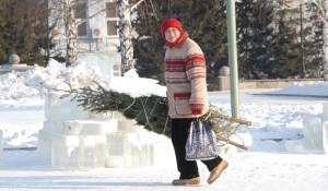 Женщина и новогодняя елка.