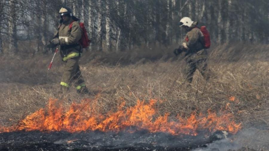 Алтайские огнеборцы тушат сельхозпалы.