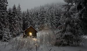 Домик в лесу. Снег.