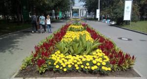 Центральный парк Барнаула.