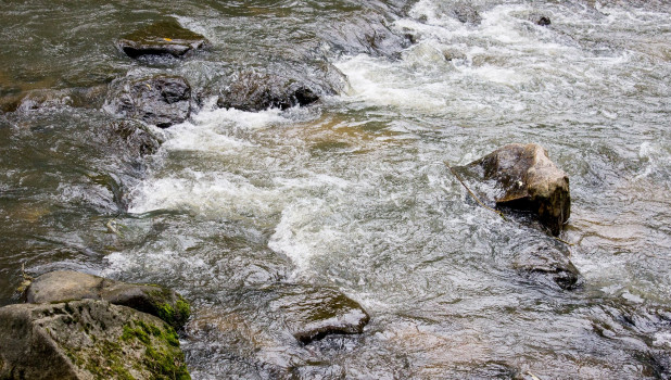 Река Белокуриха.
