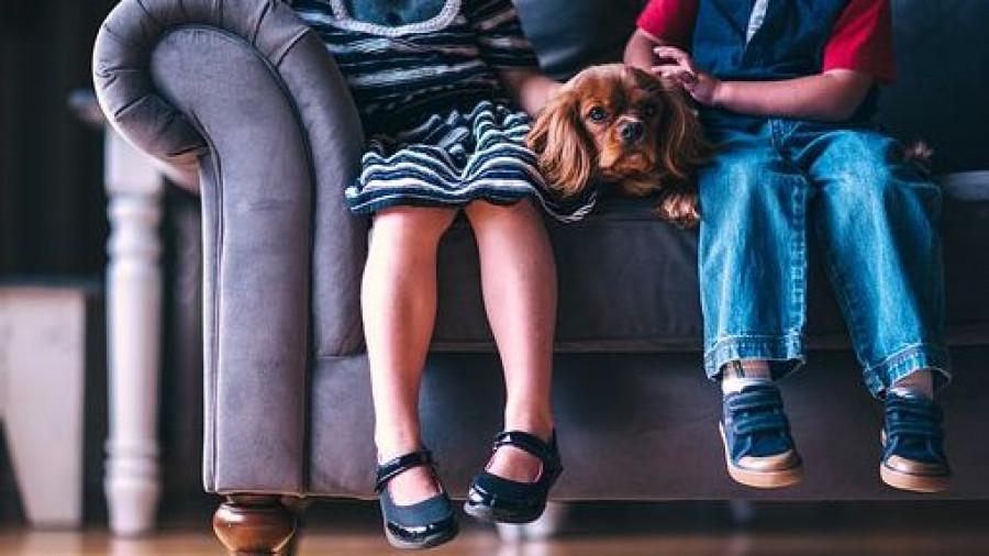 Дети с собакой.