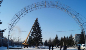 В Бийске установили первую в крае новогоднюю ель.