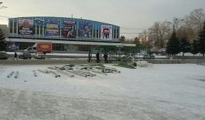 В центре Барнаула начали устанавливать главную новогоднюю ель.